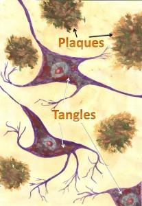 Named plaques&tangles